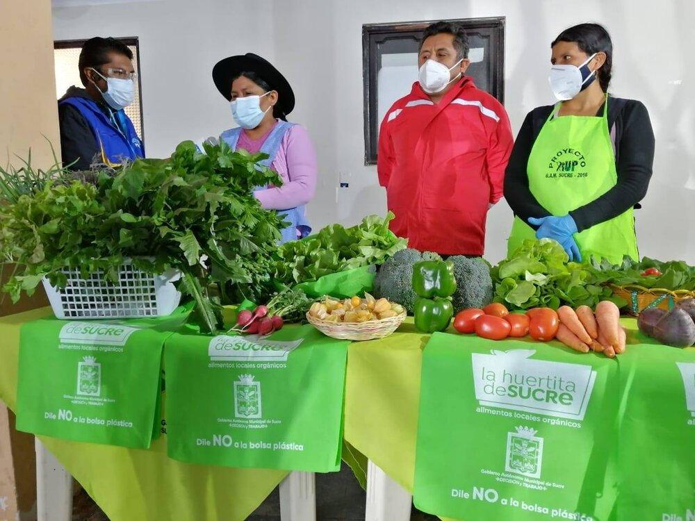 Foto: Exposición de la Feria Virtual de productos orgánicos, provenientes de las carpas solares para entrega a domicilio en el municipio de Sucre, 8 de Octubre del 2020.  Tomado de la página de Facebook de la  Huertita de Sucre .