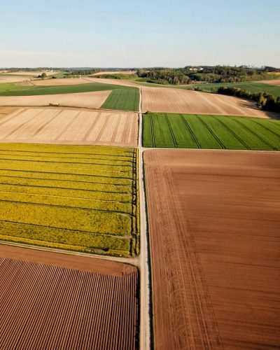 different colorful agricultural fields under sky in countryside